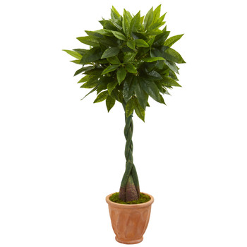 5 Money Artificial Tree in Terracotta Planter Real Touch - SKU #5725