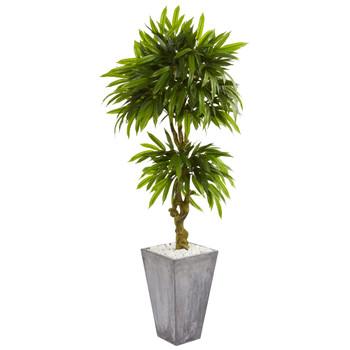 5.5 Mango Artificial Tree in Concrete Planter UV Resistant Indoor/Outdoor - SKU #5731