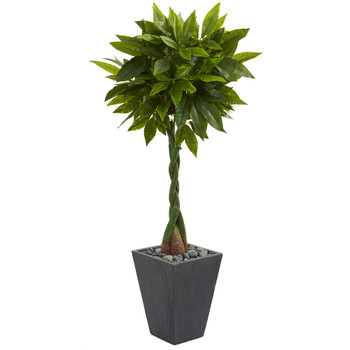 5 Money Artificial Tree in Slate Planter Real Touch - SKU #5734