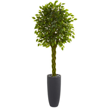 6.5 Braided Ficus Artificial Tree in Cylinder Planter UV Resistant Indoor/Outdoor - SKU #5736