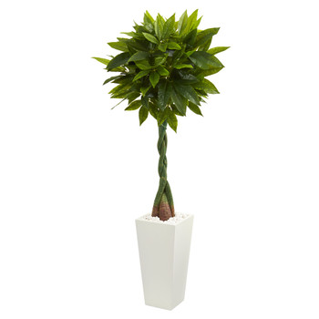 5.5 Money Artificial Tree in White Tower Planter Real Touch - SKU #5737