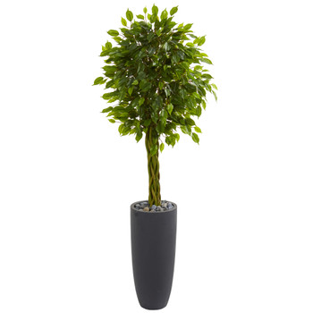 5.5 Braided Ficus Artificial Tree in Gray Cylinder Planter UV Resistant Indoor/Outdoor - SKU #5741