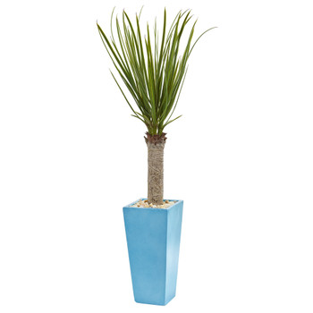 4 Yucca Artificial Tree in Turquoise Planter - SKU #5757