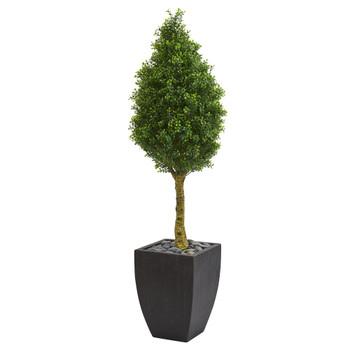 5 Boxwood Cone Artificial Tree in Black Wash Planter UV Resistant Indoor/Outdoor - SKU #5759