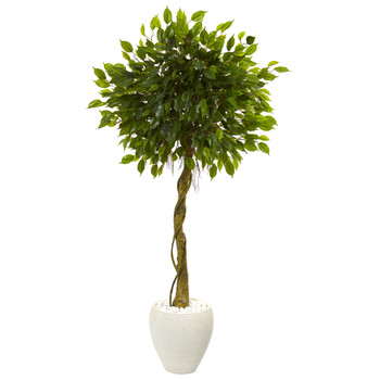 5.5 Ficus Artificial Tree in White Oval Planter UV Resistant Indoor/Outdoor - SKU #5775