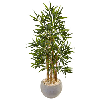 4 Bamboo Tree in Sand Colored Bowl - SKU #5802