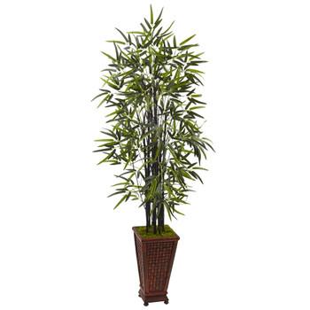 5.5 Black Bamboo Tree in Decorative Planter - SKU #5806