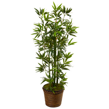 4 Bamboo Tree in Coiled Rope Planter - SKU #5808