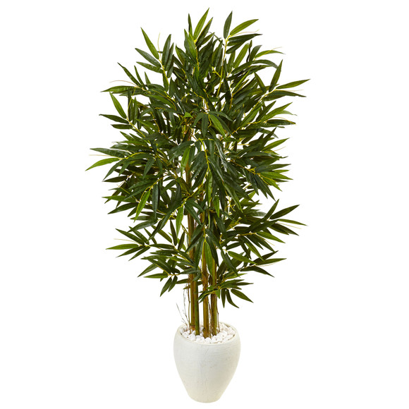 5.5 Bamboo Tree in White Oval Planter - SKU #5809