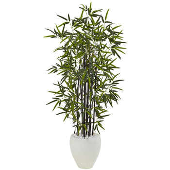 5 Black Bamboo Tree in White Oval Planter - SKU #5810