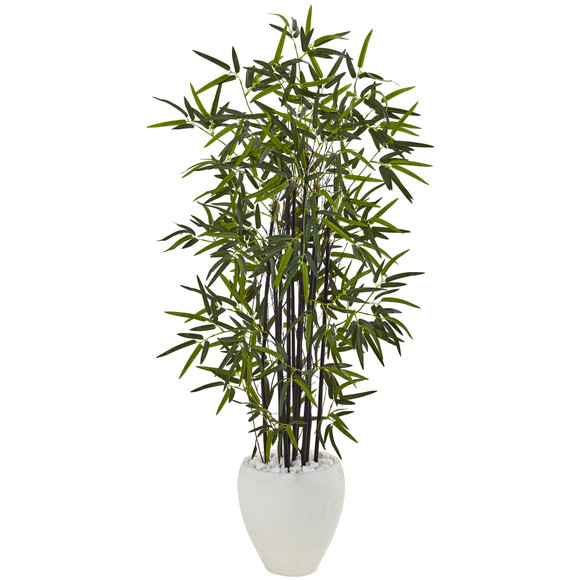 5 Black Bamboo Tree in White Oval Planter - SKU #5810