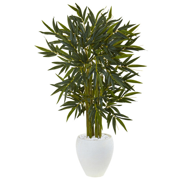 4.5 Bamboo Tree in White Oval Planter - SKU #5811