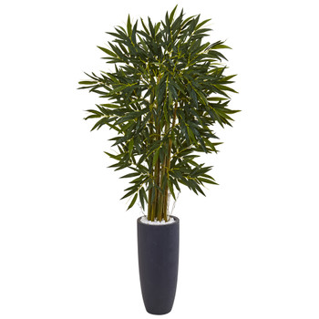 6.5 Bamboo Tree in Gray Cylinder Planter - SKU #5813
