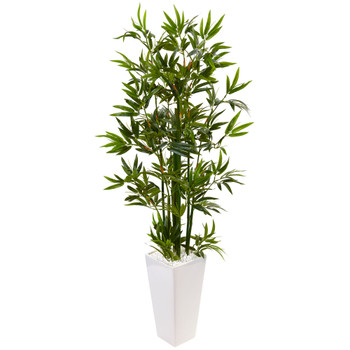 4.5 Bamboo Tree in White Tower Planter - SKU #5814
