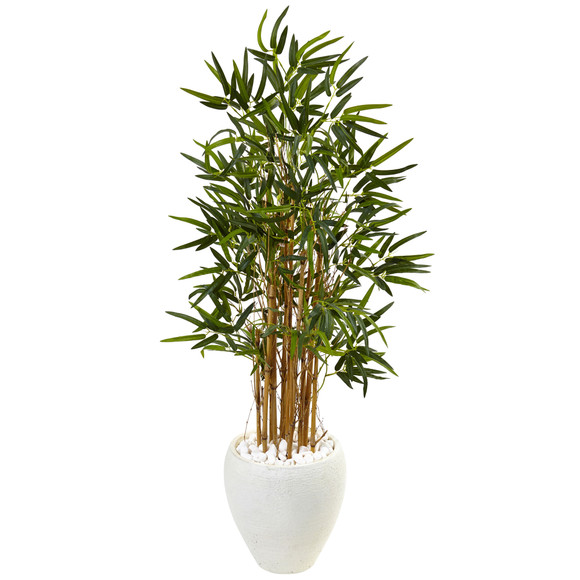 4 Bamboo Tree in White Oval Planter - SKU #5816