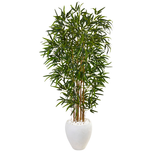 5 Bamboo Tree in Oval White Planter - SKU #5817