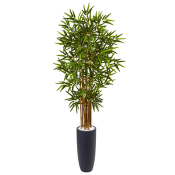 5 Bamboo Tree in Gray Cylinder Planter - SKU #5818