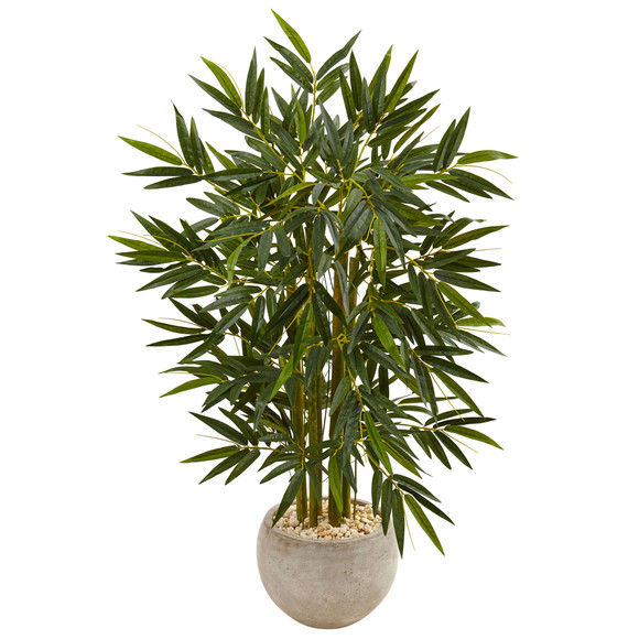 4 Bamboo Tree in Sand Colored Bowl - SKU #5824