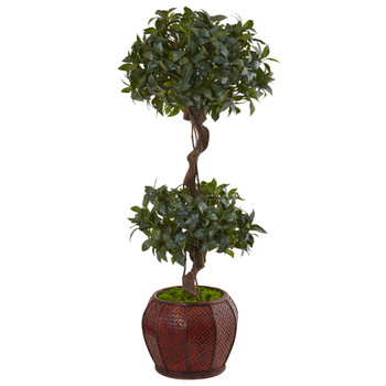4.5 Sweet Bay Double Topiary Tree in Round Wood Planter - SKU #5843