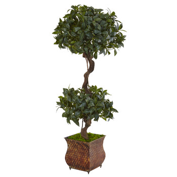 4.5 Sweet Bay Double Topiary Tree in Metal Planter - SKU #5844