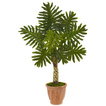4.5 Monstera Tree in Terracotta Pot - SKU #5847