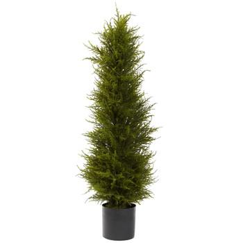 42 Cedar Tree - SKU #5917