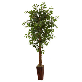 6 Ficus Tree w/Bamboo Planter - SKU #5931
