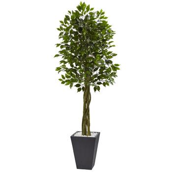 6.5 Ficus Tree with Slate Planter UV Resistant Indoor Outdoor - SKU #5948
