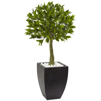 Bay Leaf Topiary with Black Wash Planter UV Resistant Indoor/Outdoor - SKU #5950