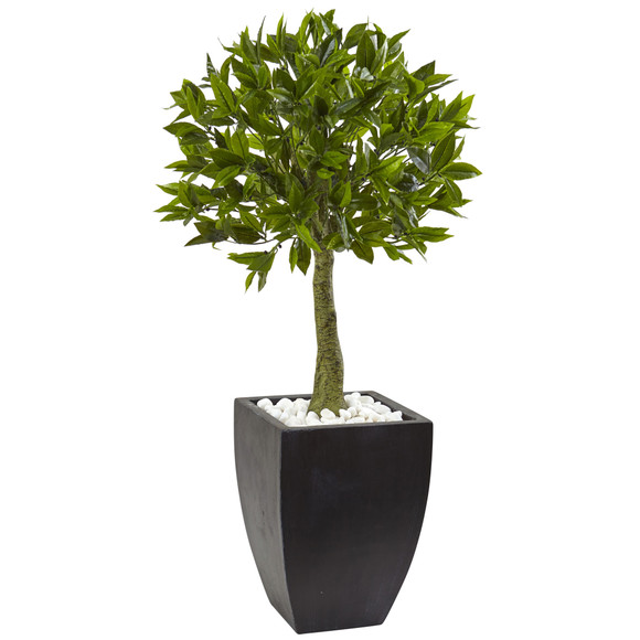 Bay Leaf Topiary with Black Wash Planter UV Resistant Indoor/Outdoor - SKU #5950