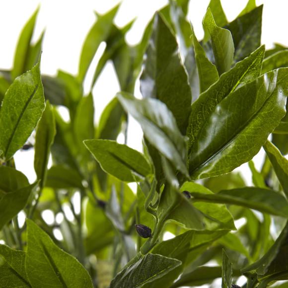 Bay Leaf Topiary with Black Wash Planter UV Resistant Indoor/Outdoor - SKU #5950 - 2
