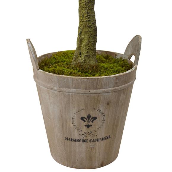 Sweet Bay Topiary with Farmhouse Planter - SKU #5951 - 1