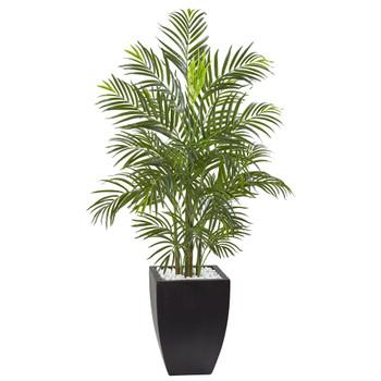 4.5 Areca Palm Tree with Black Wash Planter UV Resistant Indoor/Outdoor - SKU #5955
