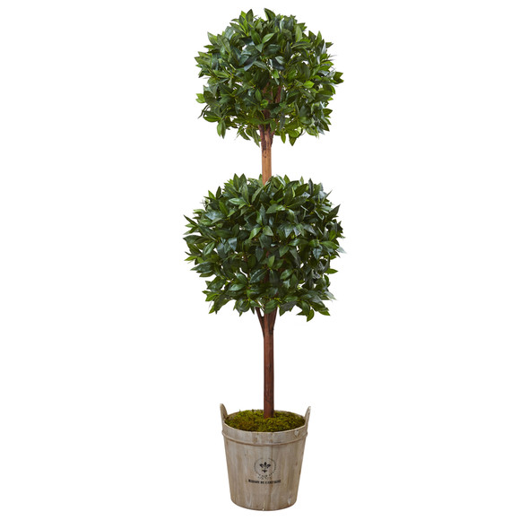 6 Double Ball Topiary Tree with European Barrel Planter - SKU #5958