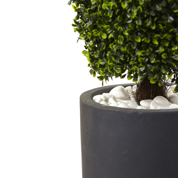50 Boxwood Topiary with Gray Cylindrical Planter UV Resistant Indoor/Outdoor - SKU #5961 - 1