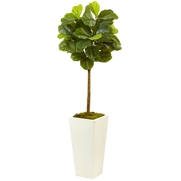 4.5 Fiddle Leaf Fig in White Planter Real Touch - SKU #5966