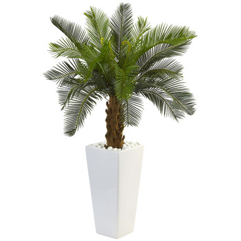 3 Cycas Tree in White Tower Planter - SKU #5973