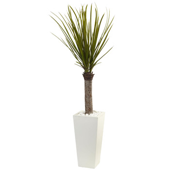 4 Yucca Tree in White Tower Planter - SKU #5975