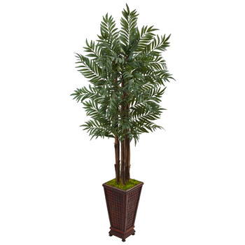 5 Parlor Palm Tree in Wooden Decorated Planter - SKU #5990