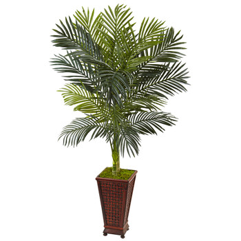 5 Golden Cane Palm Tree in Decorative Planter - SKU #5992