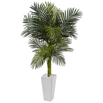 5 Golden Cane Palm Tree in White Tower Planter - SKU #5994