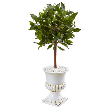 2.5 Sweet Bay Mini Topiary Tree in White Urn - SKU #5995
