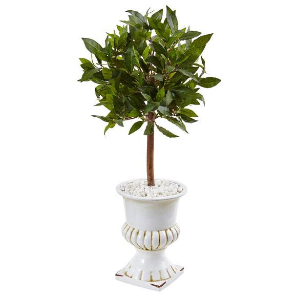 2.5 Sweet Bay Mini Topiary Tree in White Urn - SKU #5995