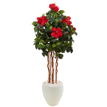 4.5 Hibiscus Tree in White Oval Vase - SKU #5998