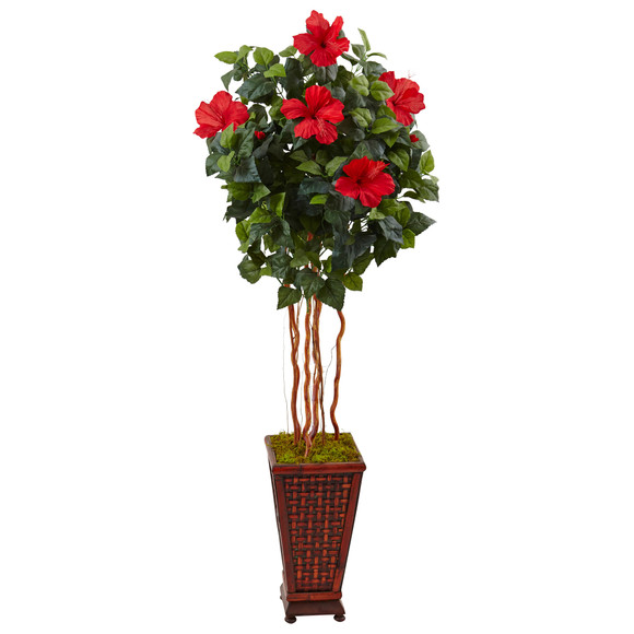5 Hibiscus Tree in Decorated Wooden Planter - SKU #5999