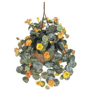 Nasturtium Silk Hanging Basket - SKU #6025