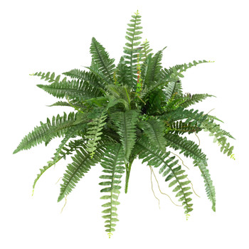 40 Boston Fern Set of 2 - SKU #6032-S2