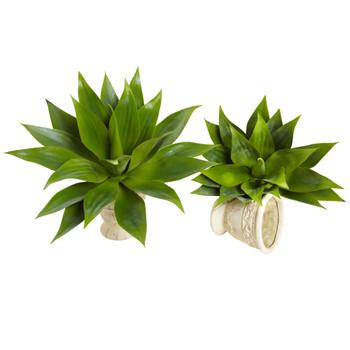 17 Agave Succulent Plant Set of 2 - SKU #6109-S2