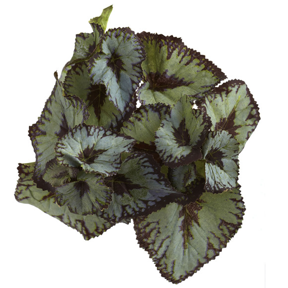 Rex Begonia Artificial Bush Set of 12 - SKU #6129-S12 - 1