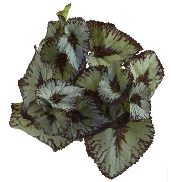 Rex Begonia Artificial Bush Set of 12 - SKU #6129-S12 - 1